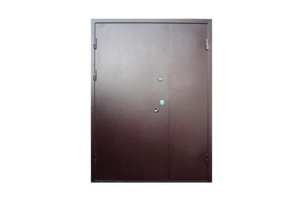 Двух створчатая металлическая дверь в порошке